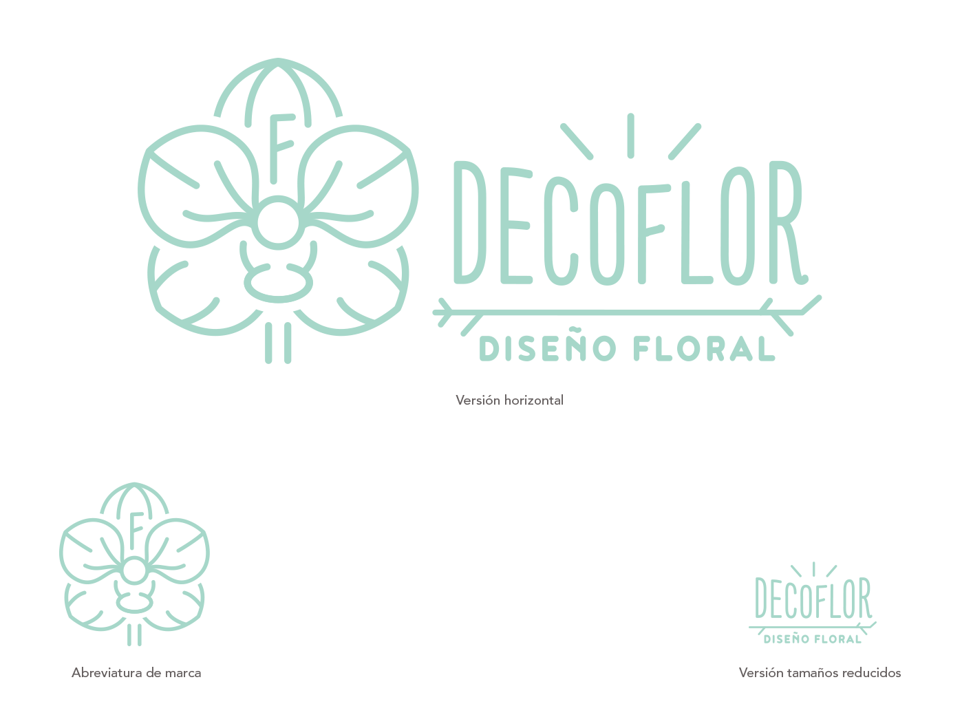 58126decoflor_versiones_marca
